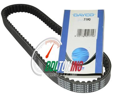 v-snaar run180-2t/ski125/typ125 22.0x834 dayco/pirelli 7190