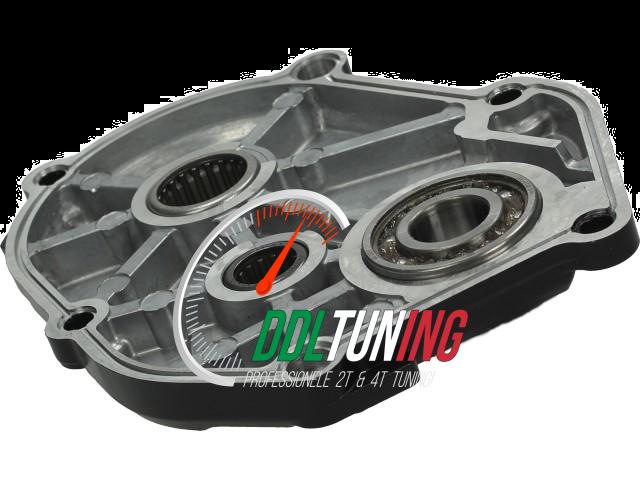 Vertandingsdeksel Polini Evolution Gelagerd Minarelli